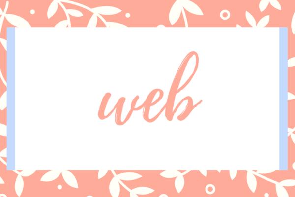 web環境