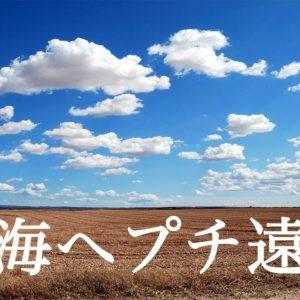 【商品紹介あり】東海プチ遠征に行ってきた!